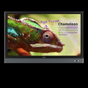 "BenQ 4K UHD 55"" Education Interactive Flat Panel Display | RM5501K"
